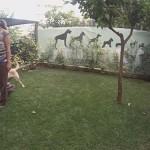 θετική εκπαίδευση σκύλων λαμπραντόρ